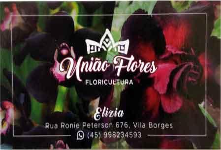 UNIÃO-FLORES-FLORIULTURA