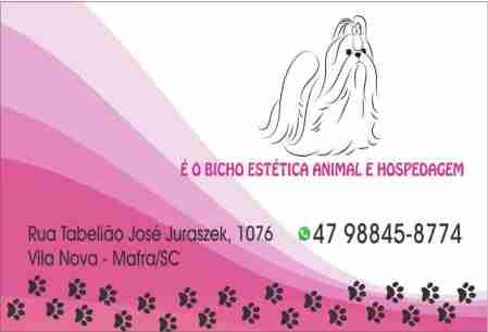 É O BICHO ESTÉTICA ANIMAL MAFRA
