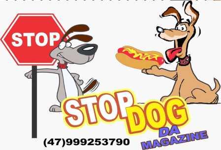 stop dog itapema