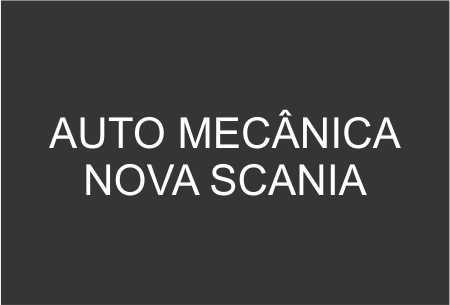 auto mecanica nova scania